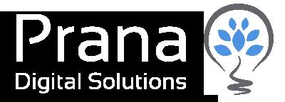 Prana Soluções Digitais | Consultoria Web | Website WordPress | Loja Virtual Woocommerce | CRM